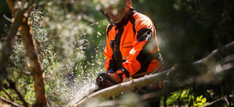 Motorsägen, Seilwinden oder Spalter: Entdecken Sie unsere Auswahl an Forsttechnik namhafter Hersteller.